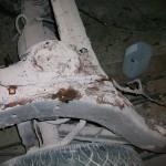 visos foto 2011 03 15 164